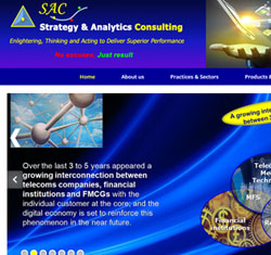 Strategy Analytics Consulting